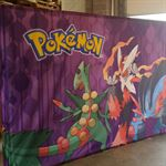 Pokemon Fabric Pop Up Banner